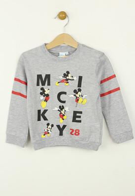 Bluza Disney Rocky Colors