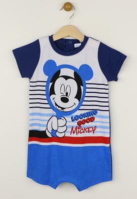 Body Disney Nick Colors