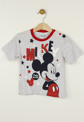 Tricou Disney Eric Grey