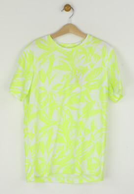 Tricou Jack and Jones Lloyd Light Green